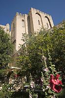"""Europe/France/Provence-Alpes-Cote d'Azur/84/ Vaucluse/Avignon:le Palais des Papes (Symbole du rayonnement de l'église sur l'Occident Chrétien au XIV° siècle) vu depuis le jardin de l'Hotel de charme """"La Mirande"""""""