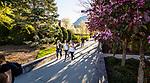 1704-06 GCS Spring 0006<br /> <br /> 1704-06 GCS Spring<br /> <br /> April 5, 2017<br /> <br /> Photography by Nate Edwards/BYU<br /> <br /> &copy; BYU PHOTO 2016<br /> All Rights Reserved<br /> photo@byu.edu  (801)422-7322