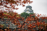 Tranquil autumn morning scenery of Osaka Castle, Osakajo and a canal through tree branches with red autumn leaves. Osaka Castle Park in fall, Chuo ward, Osaka city, Japan 2017