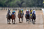 HOT SPRINGS, AR - APRIL 14:Arkansas Derby . Oaklawn Park on April 14, 2018 in Hot Springs,Arkansas. (Photo by Ted McClenning/Eclipse Sportswire/Getty Images)