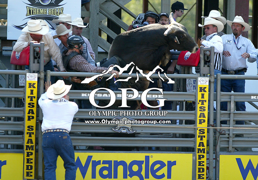 "30 Aug 2009:  Beau Schroeder hangs on as the bull ""Get It, Got it, Gone"" attempts to jump out of the shoot during the Extreme Bulls tour stop in Bremerton, Washington.  Bremerton was the last stop in the Wrangler Million Dollar Pro Rodeo Silver Tour for 2009."