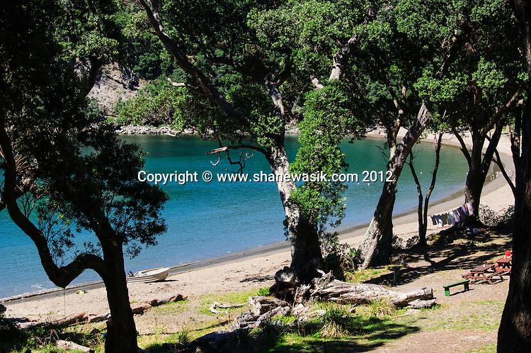 Looking through the Pohutukawa Trees to the beach at south east bay at Mayor Island / Tuhua.