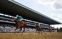 ELMONT, NY - JUNE 09:  Roy H with Paco Lopez up wins the True North Stakes at Belmont Park on June 9, 2017 in Elmont, New York. (Photo by Alex Evers/Eclipse Sportswire/Getty Images)