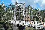 Kindee Bridge - Hastings Valley NSW