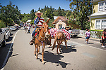 Independence Day celebration Main Street, Mokelumne Hill, California..A string of patriotic red mules