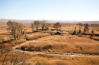 Sao Roque de Minas_MG, Brasil...Parque Nacional Serra da Canastra em Sao Roque de Minas...Serra da Canastra National Park  in Sao Roque de Minas...Foto: LEO DRUMOND / NITRO