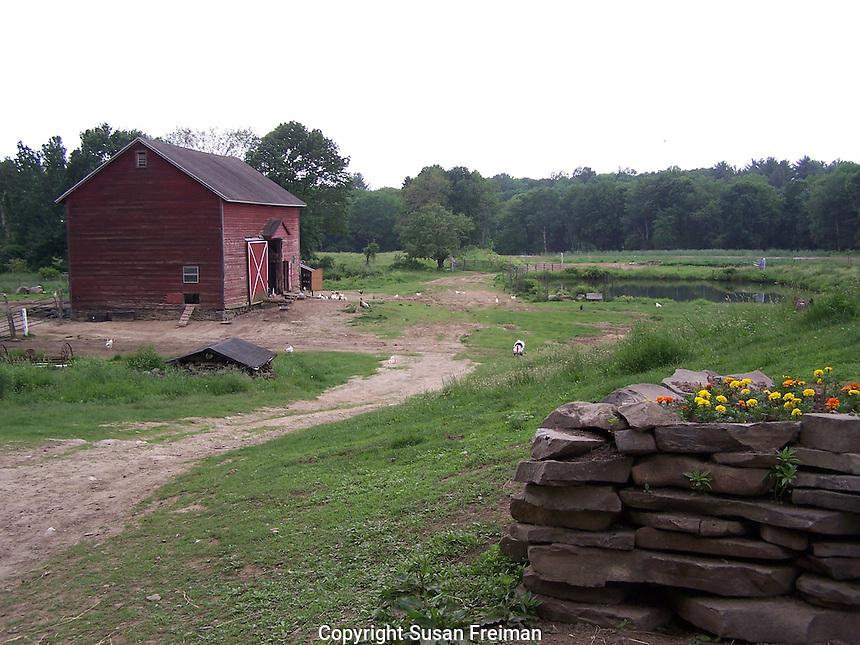 Veritas Farms, Esopus, NY