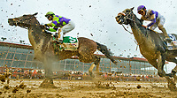 CHARLES TOWN, WV - APRIL 22: Imperative #5, ridden by Javier Castellano, splashes through the mud the first time by the stands before winning the Charles Town Classic agaoin on Charles Town Classic Day at Charles Town Races and Slots on April 22, 2017 in Charles Town, West Virginia (Photo by Scott Serio/Eclipse Sportswire/Getty Images)