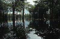 Rio Negro River flooding