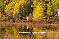 64776-01507 Pond and fall color Alger County Upper Peninsula Michigan