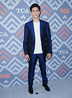 08 August  2017 - West Hollywood, California - David Mazouz.   2017 FOX Summer TCA held at SoHo House in West Hollywood. <br /> CAP/ADM/BT<br /> &copy;BT/ADM/Capital Pictures