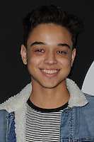 www.acepixs.com<br /> February 24, 2017  New York City<br /> <br /> Jayson Genao attending the 'Logan' New York screening at Rose Theater, Jazz at Lincoln Center on February 24, 2017 in New York City.<br /> <br /> Credit: Kristin Callahan/ACE Pictures<br /> <br /> Tel: 646 769 0430<br /> Email: info@acepixs.com