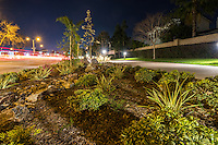 The softly lit landscaping of the Harbor Boulevard Cornerstone Bike Trail in Costa Mesa, California takes center stage at night.  Cars zoom past southbound along Harbor Boulevard, but they're reduced to nothing but a trail of taillights thanks to the long exposure.  The pathway is lit up with bright white lights to our right, in front of houses bracketed and blocked by winter foliage.  One tree has completely lost its leaves, letting us know this is a winter night.  The sky is a deep purply blue as twilight has just wrapped up.  The landscape architecture work on the project was done by David Volz Design.