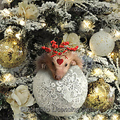 CHIARA,CHRISTMAS ANIMALS, WEIHNACHTEN TIERE, NAVIDAD ANIMALES, paintings+++++,USLGCHI565,#XA# ,funny ,funny