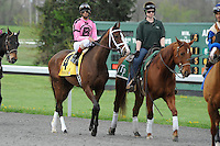 In Lingerie (no. 4), ridden by John Velazquez and trained by Todd Pletcher, wins the 30th running of the grade 3 Bourbonette Oaks for three year old fillies on March 24, 2012 at Turfway Park in Florence, Kentucky.  (Bob Mayberger/Eclipse Sportswire)