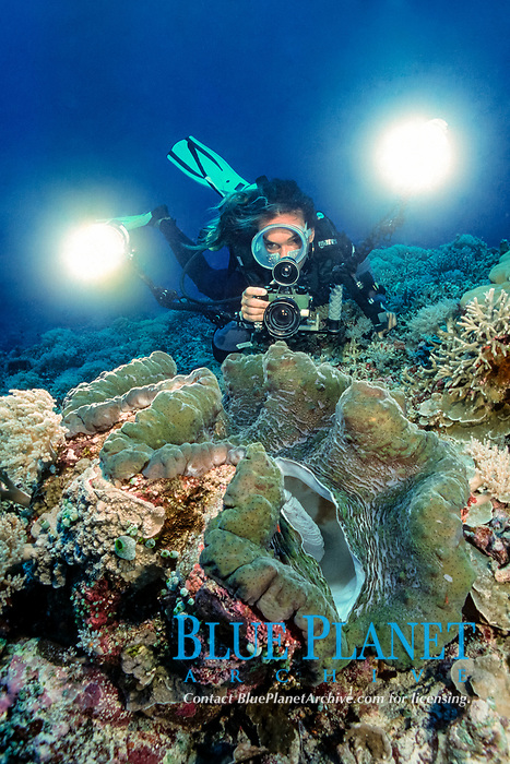 Giant clam and photographer - Tridacna gigas - Dive site Barrack's Point - Peleliu Island - Palau - Pacific Ocean - MR