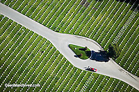 aerial photograph National Cemetery San Francisco Presidio California