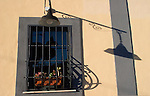 Barred Window, Flower Pots, Rome, Italy