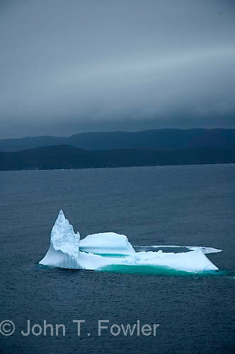 Iceberg in Englee Harbour, Newfoundland