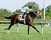 Dancing Lounge winning at Delaware Park on 9/13/12