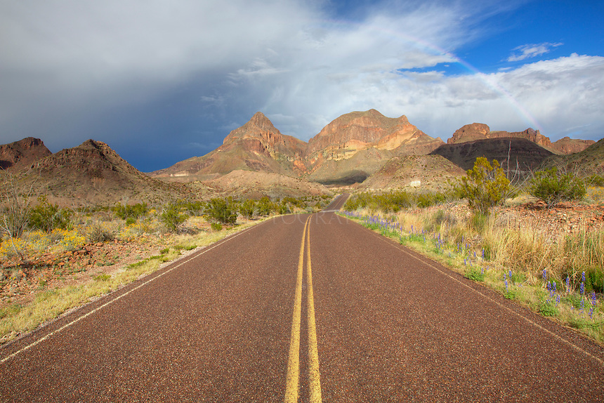 Storms had unleashed rain and hail over the Chisos Mountains of Big Bend National Park, but as the clouds began to break, a rainbow formed in the east. Along the roadsides, patches of bluebonnets and other wildflowers soaked up the rare rain.