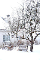 Snow falls silently in the farm's courtyard