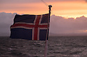 The Icelandic flag flaps in the wind, on a whale watching boat, as it departs from Reykjavik at dawn.
