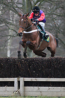 Race winner Barbers Shop ridden by M N de Boinville in jumping action during the Walter Wales Fox Hunters Chase
