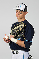 110311 Immaculata University - Sports Posters ; Baseball & Softball