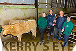 The Best lot of Weanling Heifers at the Iveragh Co-Op Mart Show and sale went to Padraig O'Connell from Dromid, pictured here l-r; Karena McCarthy(Marketing - Cahersiveen, Killarney & Kenmare CU), John Michael Sugrue Vice Chairman Iveragh Mart, Padraig O'Connell & Elma Shine Branch Manager Cahersiveen CU Sponsors.