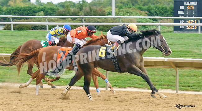 French Paradox winning at Delaware Park on 9/26/15