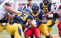 Saturday, November 2nd, 2013: California's Jacobi Hunter at Memorial Stadium, Berkeley, Final Score: Arizona defeated California 33-28