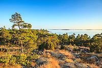 Utsikt från Järflotta över havet Stockholms skärgård och Östersjön