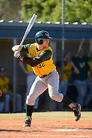 Wayne State Warriors first baseman Kyle Zimmerman #32 during a game against Slippery Rock at Chain of Lakes Stadium on March 15, 2013 in Winter Haven, Florida.  Illinois State defeated Long Island 6-4.  (Mike Janes/Four Seam Images)