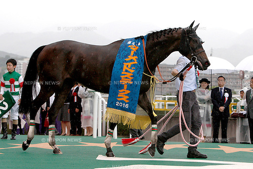 Lilavati,<br /> JUNE 12, 2016 - Horse Racing :<br /> Lilavati after winning the Mermaid Stakes at Hanshin Racecourse in Hyogo, Japan. (Photo by Eiichi Yamane/AFLO)