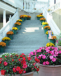 Flowers on steps Kennebunkport Maine, Maine, New England region of northeatern United States, boardered by Atlantic Ocean to the east and south, Maine is the northermost and easternmorst portion of New England, jagged rocky coastline, rolling mountains, heavily forested interior picturesque waterways, seafood cuisine, lobster and clams, European settlement in Maine was 1604, 23rd state March 15 1820, Dirigo, Maine is The Pine Tree State, Maine Stock and Fine Art Photography.  All Rights Reserved RonBennettPhotography.com All Photographs for SALE.