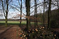 Public Park Zijmpendaal at Arnhem in Netherlands