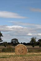 Single bale of hay, North Yorkshire, England. Sep 2007