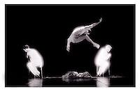 Choreography Nomade InfraRed
