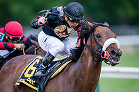 BALTIMORE, MD - MAY 19: Shaman Ghost #6 (black hat), ridden by Javier Castellano, comes around the turn for home with the pack and wins the Pimlico Special Stakes on Black-Eyed Susan Day at Pimlico Race Course on May 19, 2017 in Baltimore, Maryland.(Photo by Douglas DeFelice/Eclipse Sportswire/Getty Images)