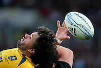 Australia's Adam Ashley-Cooper in action against New Zealand in the Bledisloe Cup rugby match, Forsyth Barr Stadium, Dunedin, New Zealand, Saturday, October 19, 2013. Credit:SNPA / Dianne Manson.