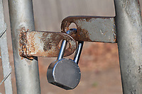 A padlock secures a rusted gate.