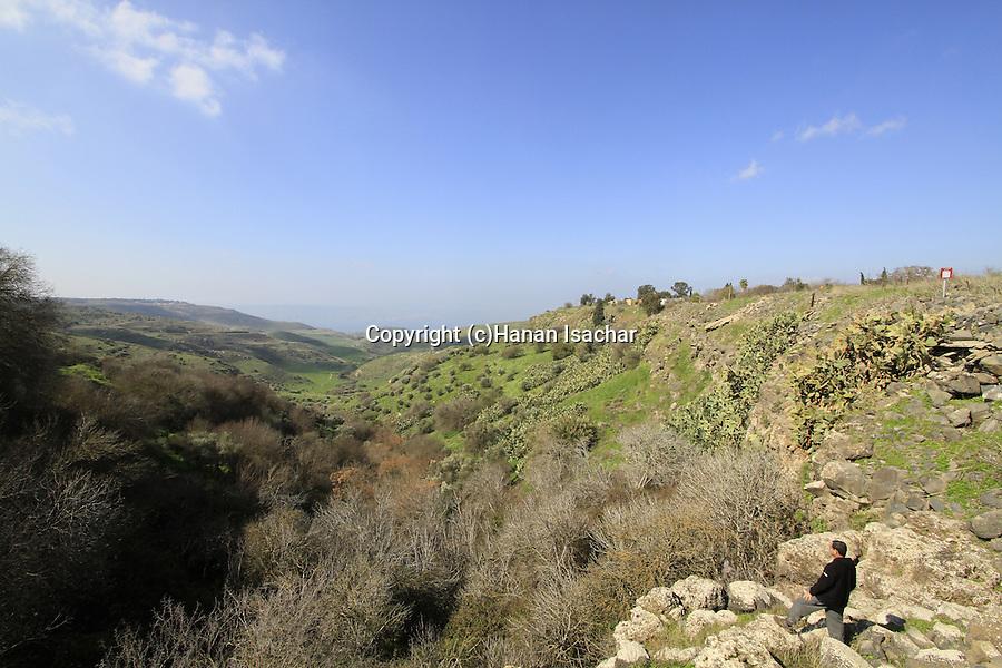 Golan Heights, a view of Wadi Ein Gev and Susita from Ein Fik