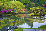 Seattle, WA<br /> Dappled morning sun on willow tree and lake reflections in the Japanese garden in the Washington Park Arboretum