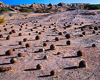 Round Concretions at the Cancha de Bochas, Ischigualasto Provincial Park, Argentina   Valley of the Moon San Juan Province