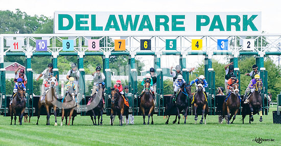 Tarkia winning at Delaware Park on 8/4/16