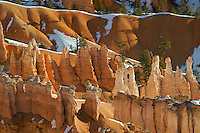 Various rock formations in Bryce Canyon National Park, Utah. Hoodoos are pinnacles or odd-shaped rocks left standing by the forces of erosion. The process of formation can be seen in this one image. Starting as fins, as in the lower right corner, the action of frost-wedging often creates windows, as seen in the middle, which later collapse to form hoodoos, as seen center left and right.