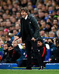 Chelsea's Antonio Conte in action during the Champions League Group C match at the Stamford Bridge, London. Picture date: December 5th 2017. Picture credit should read: David Klein/Sportimage