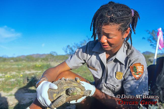 Gillian Bowser With Derert Tortoise