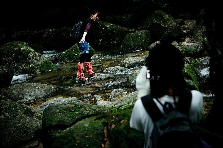 "Yakushima, June 2011 - Japanes tourists on Shiratani valley path, on the way to ""Mononoke forest"", which inspired Miyazaki for its anime movie ""Princess Mononoke""."